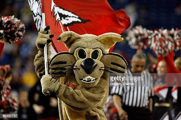 The mascot for the Davidson Wildcats runs on the court with a flag against the Kansas Jayhawks during the Midwest Regional Final of the 2008 NCAA...