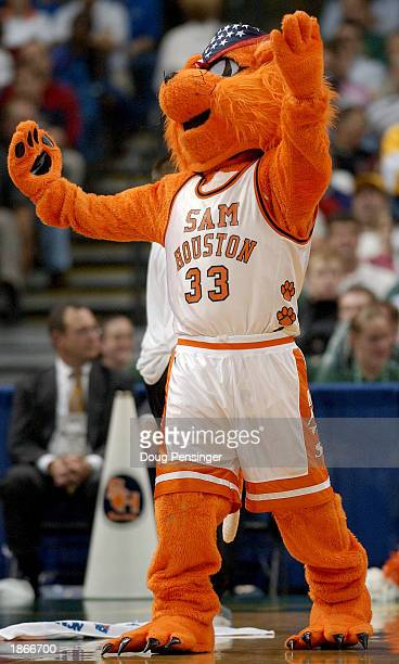 The mascot for the Sam Houston State Bearkats cheers for his team against the University of Florida Gators as the Gators defeated the Bearkats 8555...
