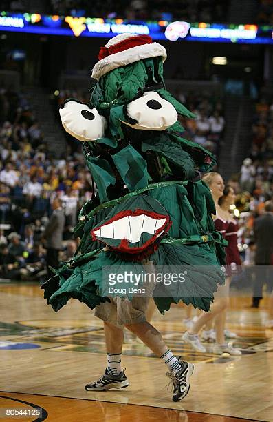 The mascot for the Stanford Cardinal performs against the UCONN Huskies during their National Semifinal Game of the 2008 NCAA Women's Final Four at...