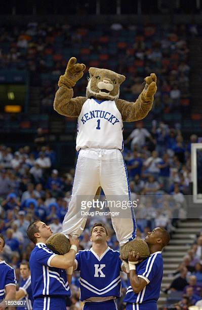 The mascot for the University of Kentucky Wildcats is supported by the cheerleaders as they support their team against the Vanderbilt University...