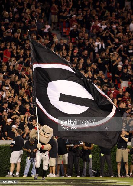 The mascot of Georgia carries the Georgia flag after a touchdown as the Alabama Crimson Tide take on the Georgia Bulldogs at Sanford Stadium on...