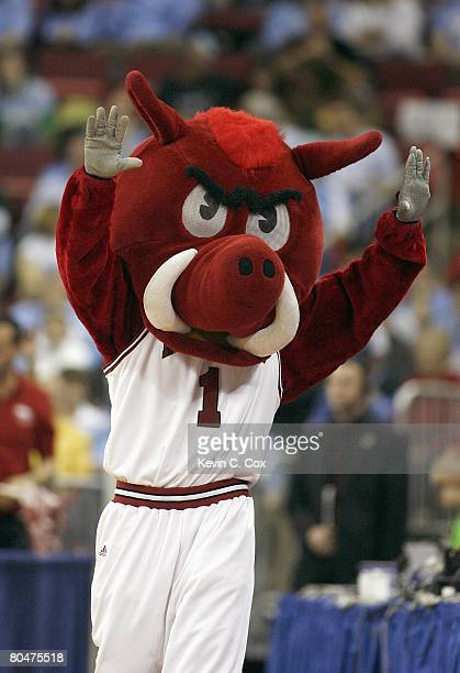 The mascot of the Arkansas Razorbacks cheers against the Indiana Hoosiers during the 1st round of the 2008 NCAA Men's Basketball Tournament on March...