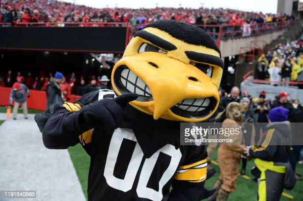 The mascot of the Iowa Hawkeyes performs during the game against the Nebraska Cornhuskers at Memorial Stadium on November 29 2019 in Lincoln Nebraska