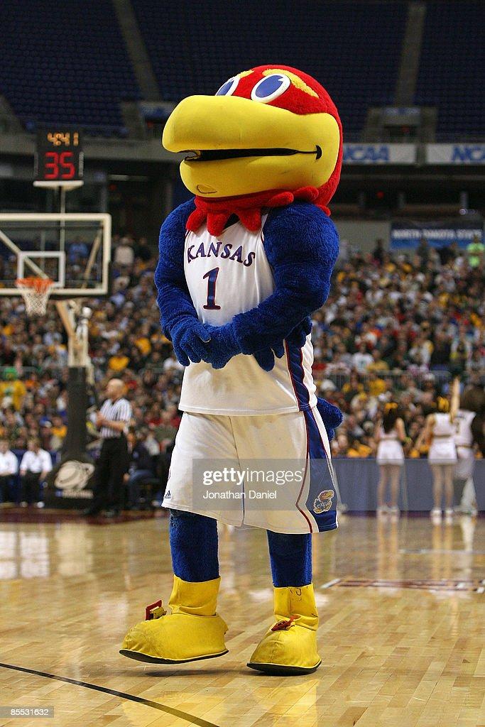 Mascot Monday: University of Kansas Jayhawks | Kansas