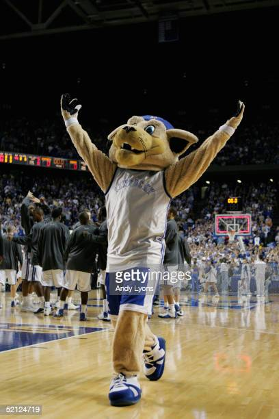 The mascot of the Kentucky Wildcats encourages the crowd before the game against the Kansas Jayhawks on January 9 2005 at Rupp Arena in Lexington...