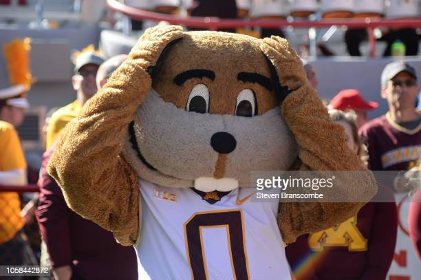 The mascot of the Minnesota Golden Gophers reacts during the game against the Nebraska Cornhuskers at Memorial Stadium on October 20 2018 in Lincoln...
