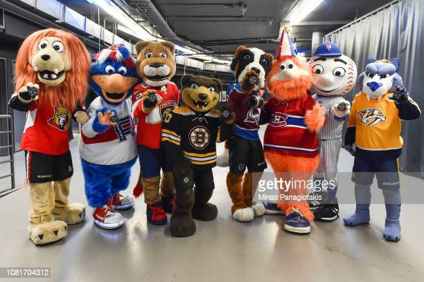 The mascot of the Montreal Canadiens Youppi celebrates his 40th birthday with Spartacat of the Ottawa Senators Cosmo of the Laval Rocket Stanley C...