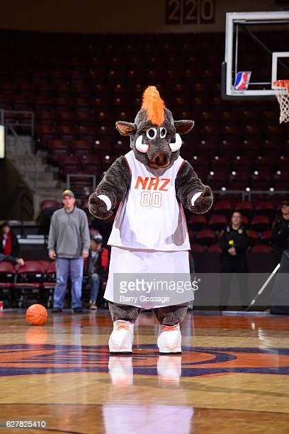 The mascot of the Northern Arizona Suns during the game against the Reno Bighorns on December 3 at Precott Valley Event Center in Prescott Valley...