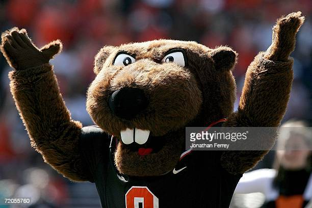 The mascot of the Oregon State Beavers against the California Golden Bears on September 29 2006 at Reser Stadium in Corvalis Oregon