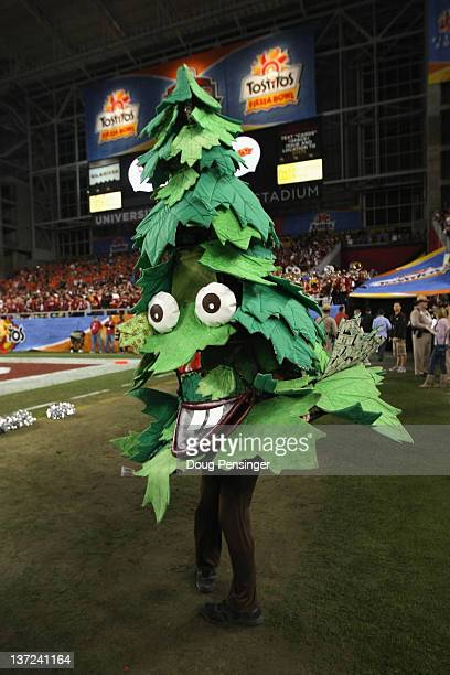 The mascot of the Stanford Cardinal performs against the Oklahoma State Cowboys during the Tostitos Fiesta Bowl on January 2 2012 at University of...