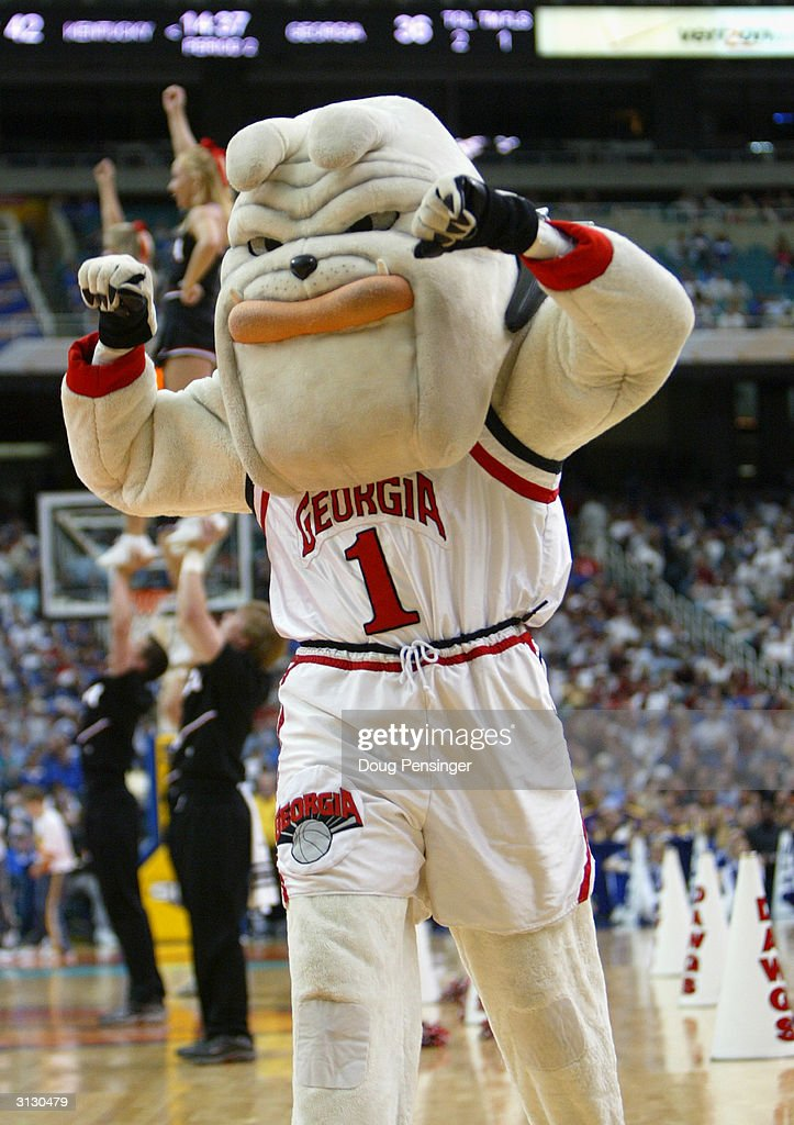The mascot of the University of Georgia Bulldogs, Hairy Dawg, excites the fans during an intermission in the SEC Men's Basketball Tournament against the University of Kentucky Wildcats at the Georgia Dome on March 12, 2004 in Atlanta, Georgia. Kentucky defeated Georgia 69-60.