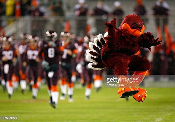 The mascot of the Virginia Tech Hokies leads the team onto the field to face the Boston College Eagles at Lane Stadium October 25, 2007 in...