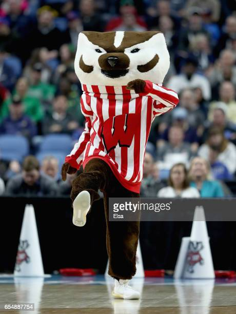 The mascot of the Wisconsin Badgers in action against the Villanova Wildcats during the second round of the 2017 NCAA Men's Basketball Tournament at...