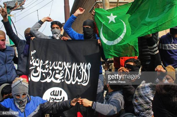 The masked youth carrying the Pakistani and ISIS flags The protest took place after the Friday prayer against the civilian killings in South Kashmirs...