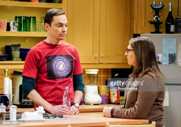 'The Matrimonial Metric' Pictured Sheldon Cooper and Amy Farrah Fowler To discover who would be most qualified to be best man and maid of honor at...