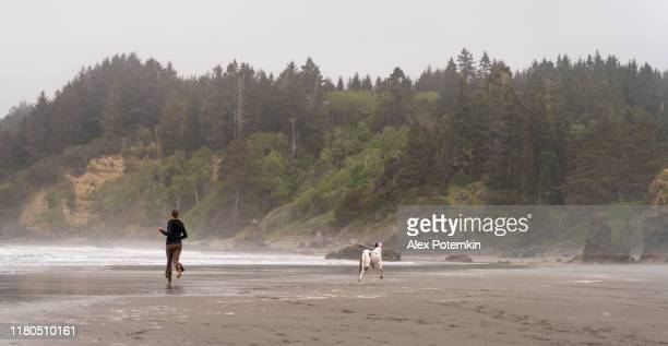 the mature, 40-years-old, caucasian-white woman running with her big dog on the beach of the pacific ocean in the foggy day. trinidad, california, west coast of united states. - pacific ocean stock pictures, royalty-free photos & images