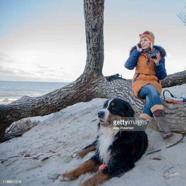 the mature 55 years old woman talking via smartphone and drinking a hot tea, resting on the baltic sea shore with her zennenhund dog. - 55 59 years stock pictures, royalty-free photos & images