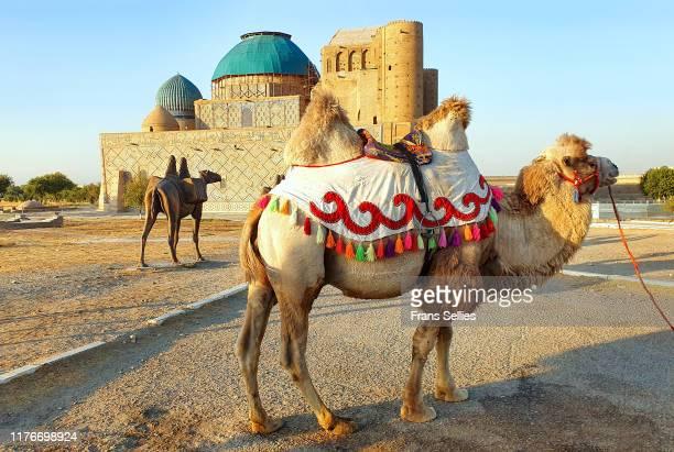 the mausoleum of khoja ahmed yasawi, turkistan, kazakhstan (unesco world heritage) - mausoleum stock pictures, royalty-free photos & images