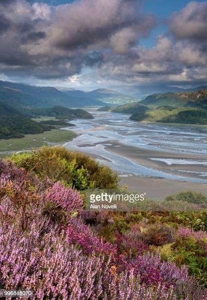 The Mawddach Estuary in summer, Snowdonia National Park, Gwynedd, North Wales, UK