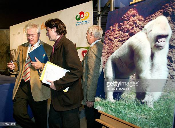 The Mayor of Barcelona Joan Clos and Pere Portabella of Barcelona council stand next a portrait of Copo de Nieve believed to be the only albino...
