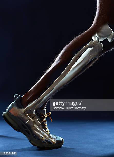 the mechanics of running - limb body part stock pictures, royalty-free photos & images