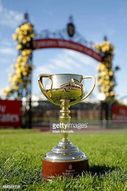 The Melbourne Cup is on display on Melbourne Cup Day at Flemington Racecourse on November 4 2014 in Melbourne Australia