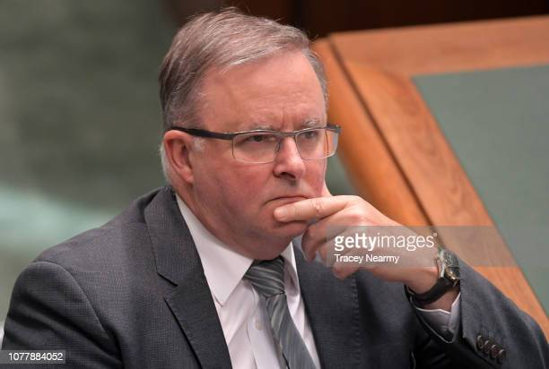 The Member for Grayndler Anthony Albanese during Question Time in the House of Representatives at Parliament House on December 06 2018 in Canberra...
