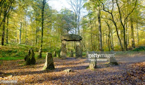 The Memorial to the Foresters at Sonian Forest on November 5 in the south-eastern part of Brussels, Belgium. The Memorial to the Foresters is a...