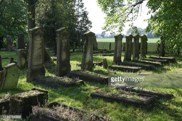 The Mennonite Cemetery area is seen in Stogi Malborskie Poland on 18 May 2019 Village of Stogi was founded in 1562 in the area of Zulawy Wielkie and...