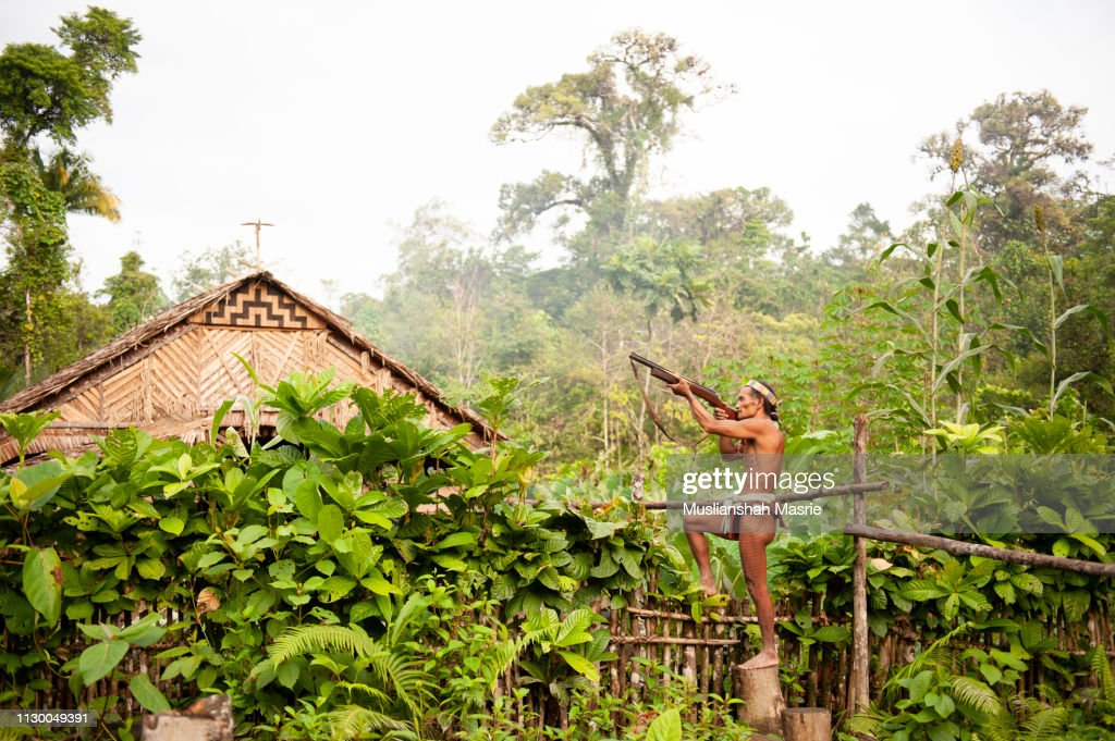 The Mentawai tribe hunting with traditional and handmade shotgun.The indigenous inhabitants ethnic of the islands in Muara Siberut are also known as the Mentawai people. : Stock Photo