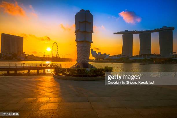the merlion statue from behind during sunrise with background view of the marina bay sands, singapore flyer and hotels around the marina bay in morning. - copyright by siripong kaewla iad ストックフォトと画像