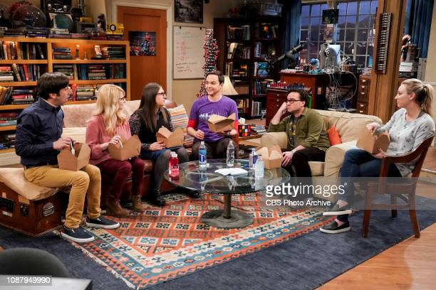 'The Meteorite Manifestation' Pictured Howard Wolowitz Bernadette Amy Farrah Fowler Sheldon Cooper Leonard Hofstadter and Penny Sheldon is thrilled...