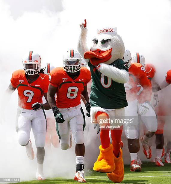 The Miami Hurricane mascot, 'Sebastian the Ibis' leads the players onto the field for the spring game between the orange team and the white team on...