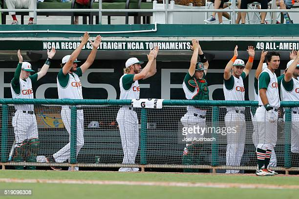 The Miami Hurricanes perform a rally ritual in the dugout against the North Carolina Tar Heels on April 3 2016 at Alex Rodriguez Park at Mark Light...