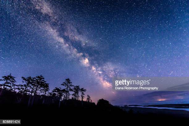 The Milky Way and meteors over Kalaloch Beach, Olympic Peninsula, Washington State