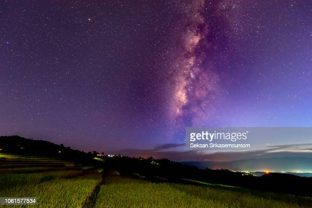 the milky way over rice field (pa pong piang rice terraces) - chapeau chinois photos et images de collection