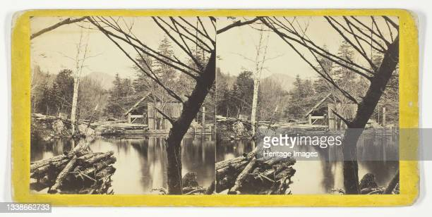 The Mill Pond near Laurel House, 1869/1901. Albumen print, stereocard, no. 9046 from the series 'The Glens of the Catskills'. Artist Anthony &...