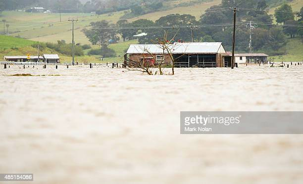 The Minumurra River floods farm land in Jamberoo on August 25 2015 in Jamberoo Australia Residents downstreamm of the Jerra dam which feeds into the...