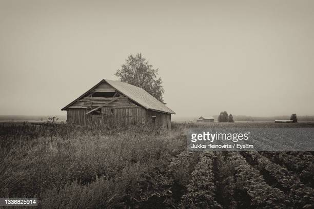 the mist covers the barns on the fields of the northern finland. - heinovirta stock pictures, royalty-free photos & images