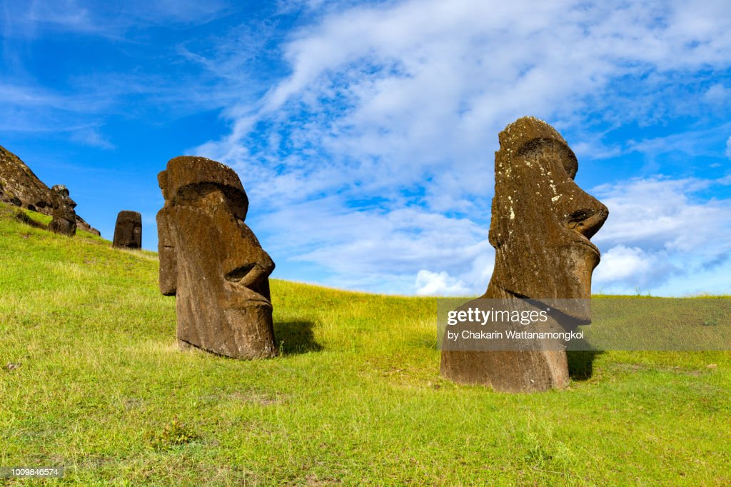 The Moai collection in Rano Raraku where most of moai in the Easter Island were originated. Taken in a sunny day with clear sky and nice weather condition. : Stock Photo