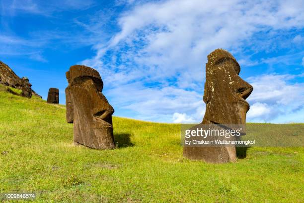 the moai collection in rano raraku where most of moai in the easter island were originated. taken in a sunny day with clear sky and nice weather condition. - rano raraku stock pictures, royalty-free photos & images