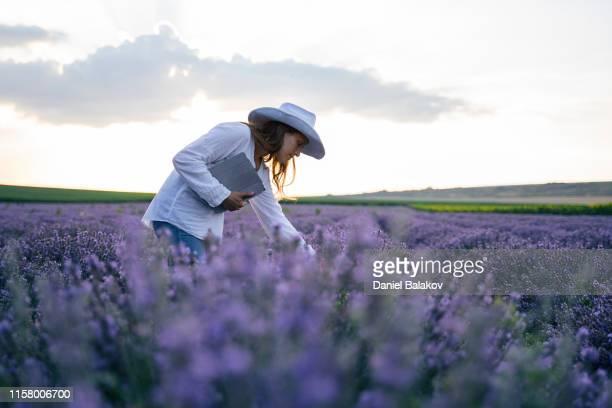 la femme de fermier moderne marchant dans ses champs de lavande en été, petite entreprise et investissement, occupation agricole. - professional occupation photos et images de collection