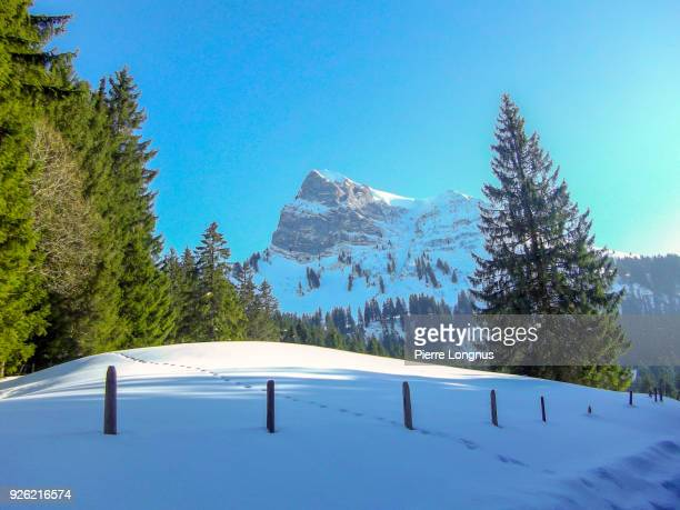 "The Moleson Mountain Peak, highest mountain of the Gruyere region, deer tracks in the snow. Picture taken near ""Gros-Plané"" geographical point"