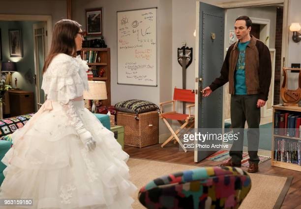 'The Monetary Insufficiency' Pictured Amy Farrah Fowler and Sheldon Cooper Sheldon goes to Vegas to win money for science Also Penny and Bernadette...