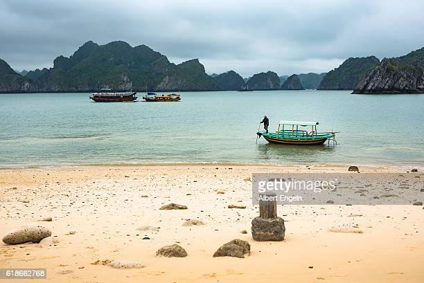 the monkey island halong bay vietnam. - halong bay imagens e fotografias de stock