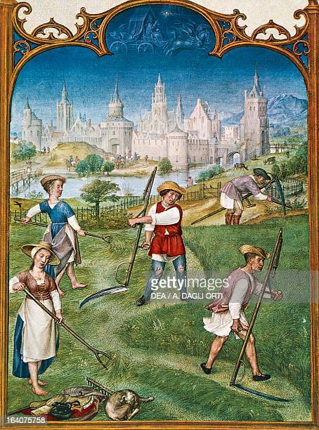 The month of June haymaking miniature from the Grimani Breviary folio 6 verso Flanders 16th century Venice Biblioteca Nazionale Marciana