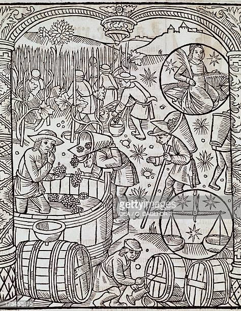 The month of the harvest with the Virgo and Libra zodiac signs engraving from Le grand calendrier des bergers France 16th century Troyes Bibliothèque...