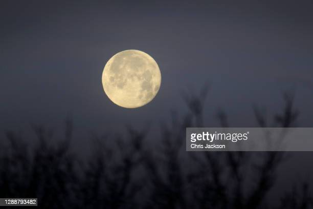 The moon drops below trees first thing in the morning on December 01, 2020 in London, England .