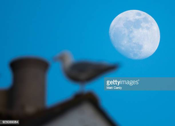 The moon is pictured above house Penzance ahead of a weather warning for heavy snow forecast to arrive overnight on February 27 2018 in Cornwall...