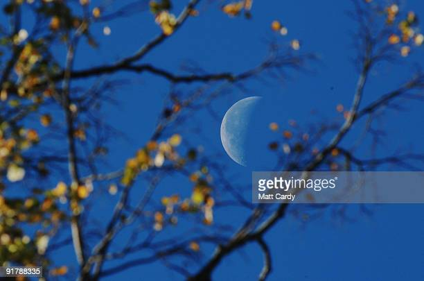 The moon is seen behind trees as the early morning sunlight breaks through leaves that are begining to change colour in Victoria Park on October 12...
